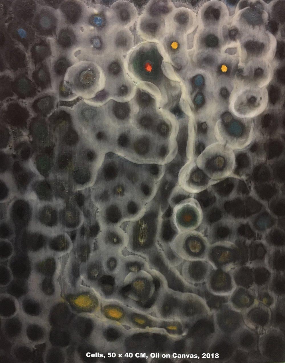 Cells, 50 x 40 CM Oil on Canvas, 2018.jpg