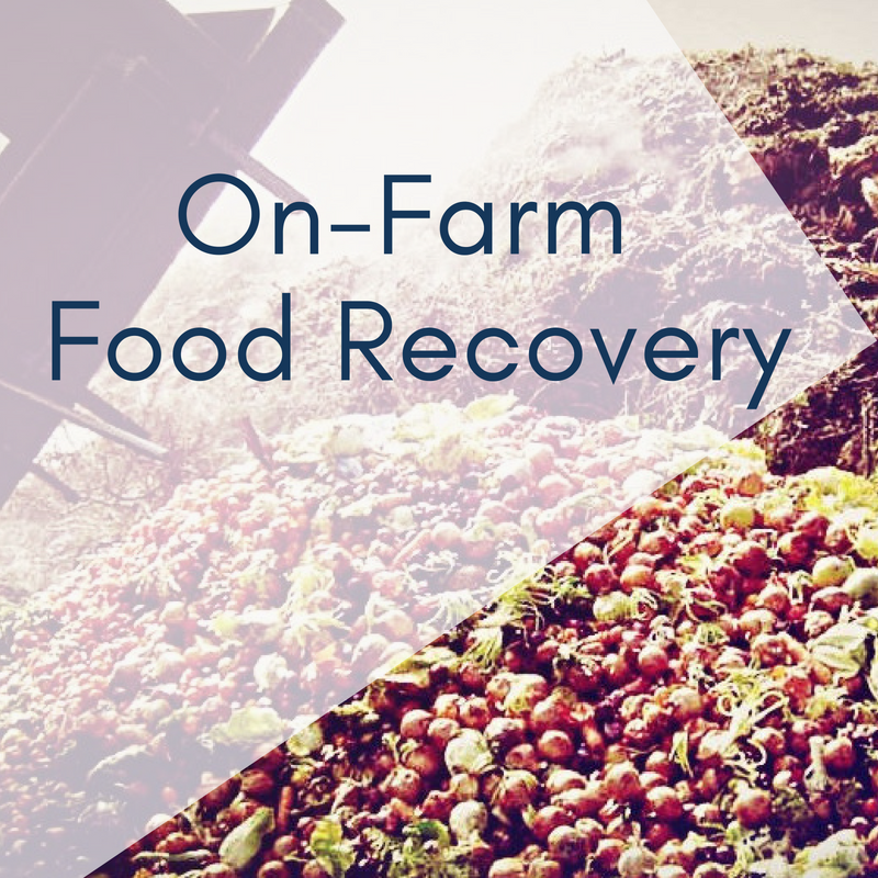 On-Farm Food Recovery