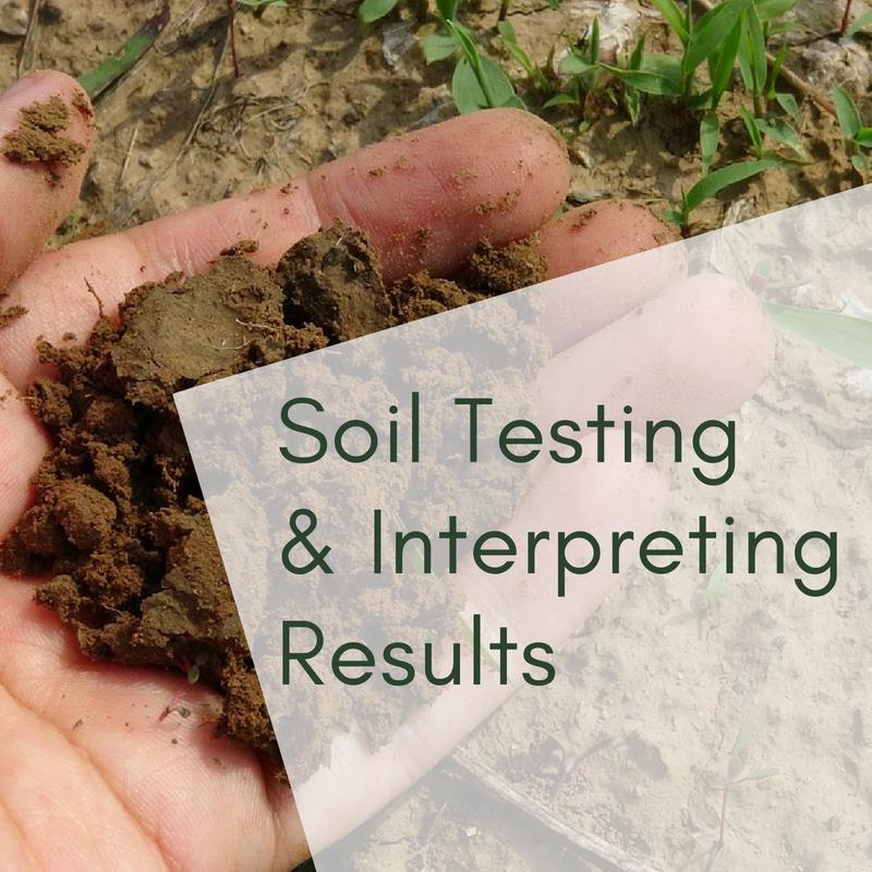Soil Testing & Interpreting Results