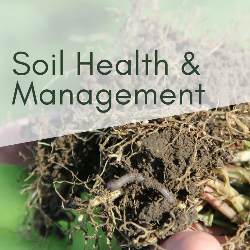 Soil Health & Management