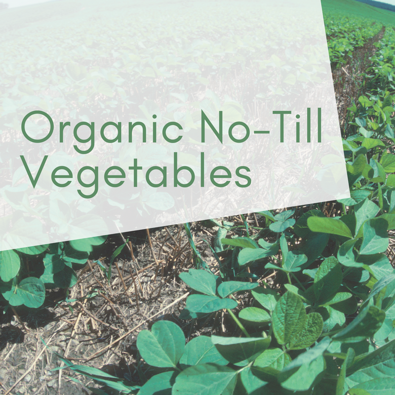 Organic No-Till Vegetables: Building Soil Health and Food Quality