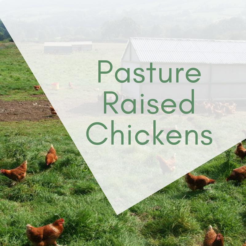 Pasture Raised Chickens