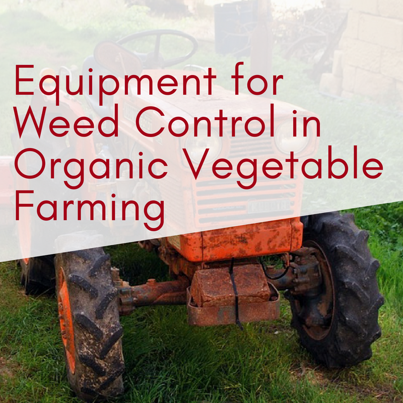 Equipment for Weed Control in Organic Vegetable Farming