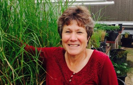 Dr. Ann Blount , University of Florida