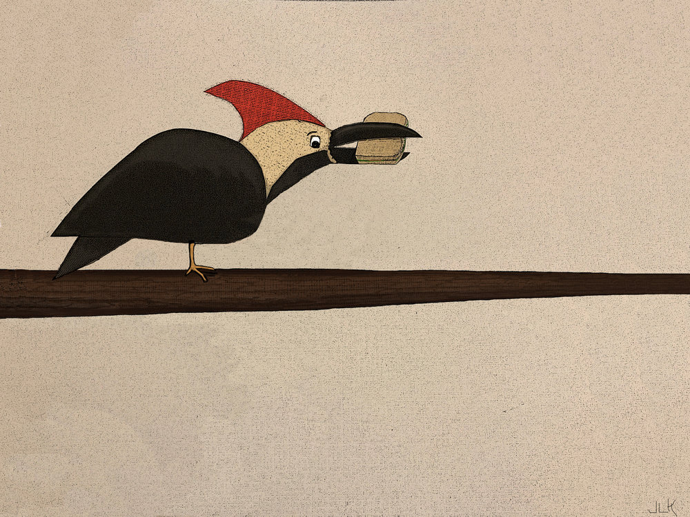 woodpecker on old background flattened no wing.jpg