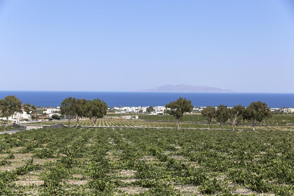 Greece-323.jpg