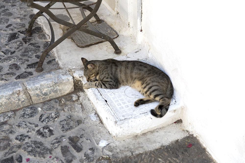 Greece-358.jpg