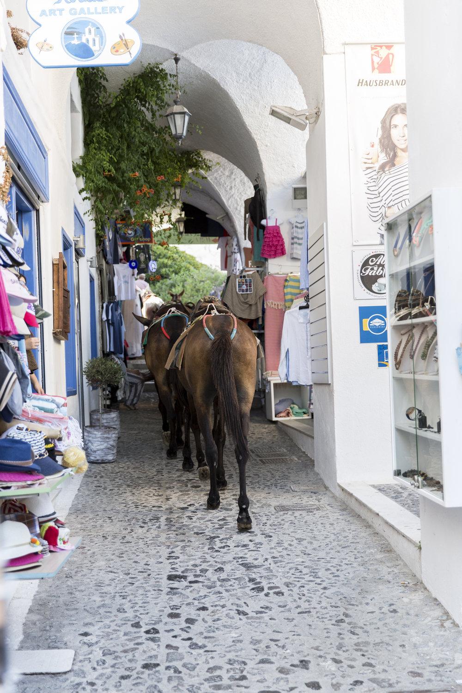 Greece-379.jpg