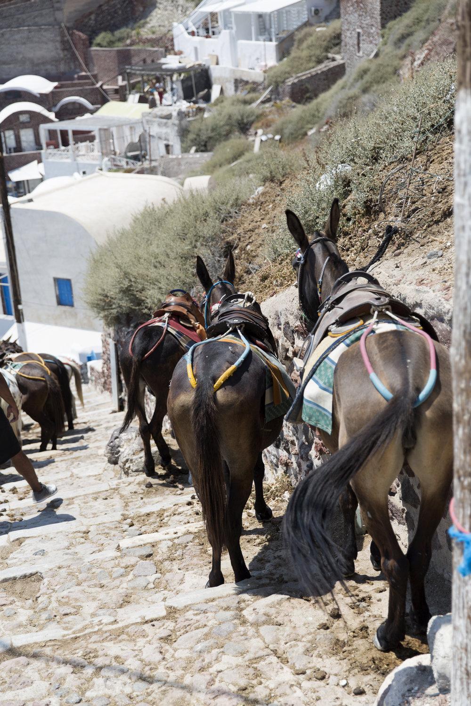 Greece-689.jpg