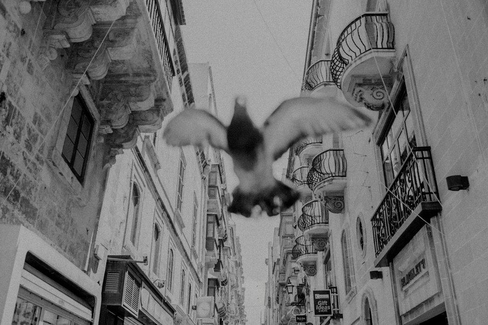 black and white documentary