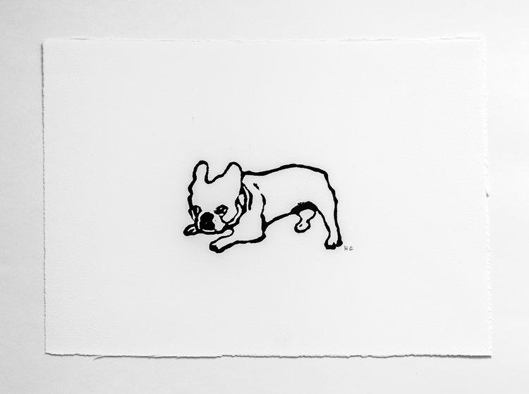 Hugo Guinness Mark's Dog