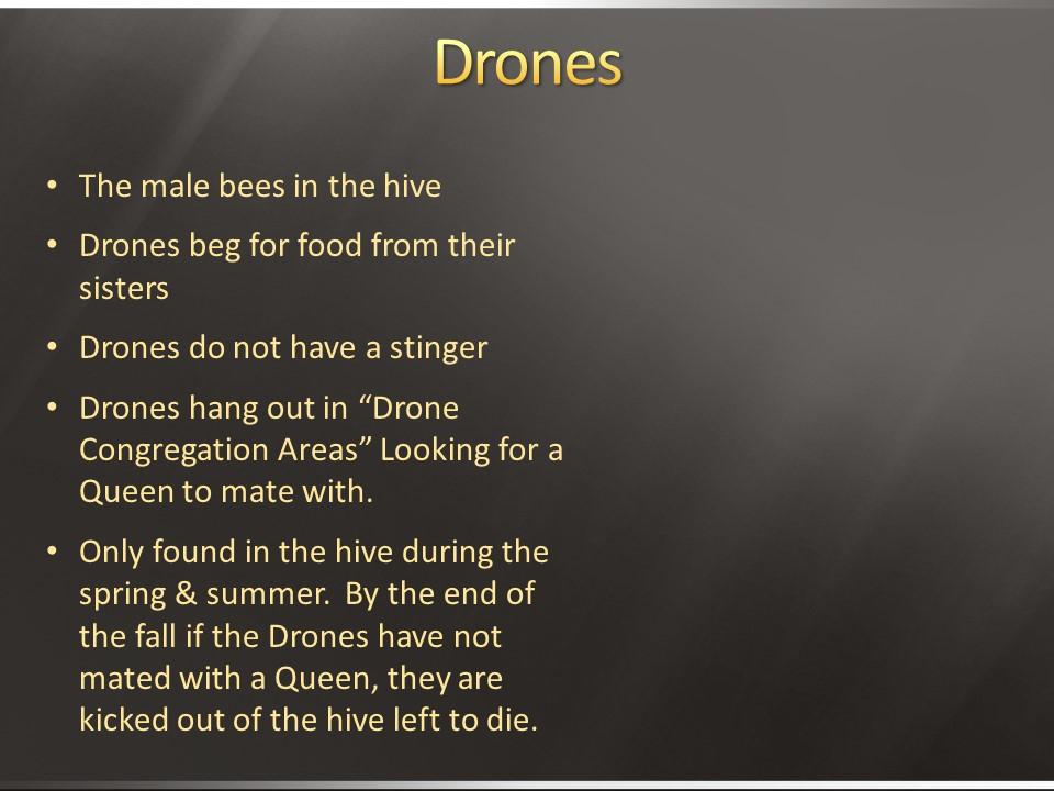 lacba dronees.JPG