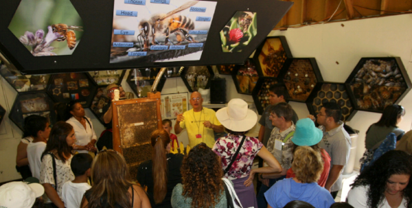 kodua galieti's exquisite honey bee photography on the walls of the La county fair bee booth.