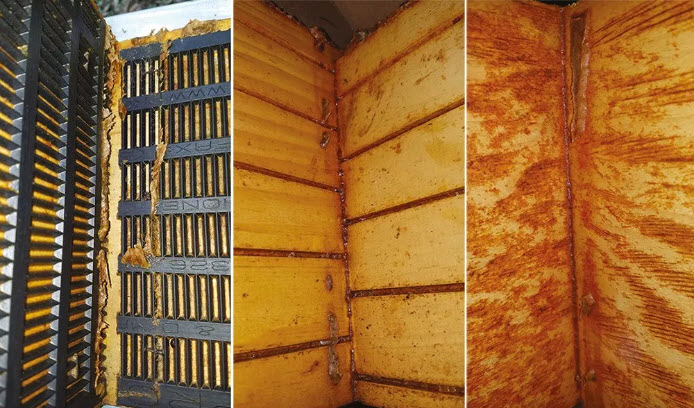 Researchers in Georgia tested three different ways to texturize the interiors of honey bee (Apis mellifera) hive walls to stimulate production of propolis: at left, plastic propolis traps are attached to the walls; at center, walls are modified with five parallel saw kerfs, 7 centimeters apart, cut 3 millimeters deep into the surface; and, at right, walls are roughened with a mechanized wire brush. All three treatments stimulated increased propolis production over smooth, unmodified walls. (Left image originally published in Borba et al 2015, Journal of Experimental Biology; center and right images originally published in Hodges et al 2018, Journal of Economic Entomology)
