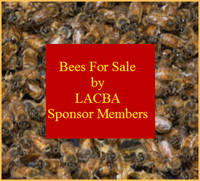 BEES FOR SALE BY  LACBA SPONSOR MEMBERS