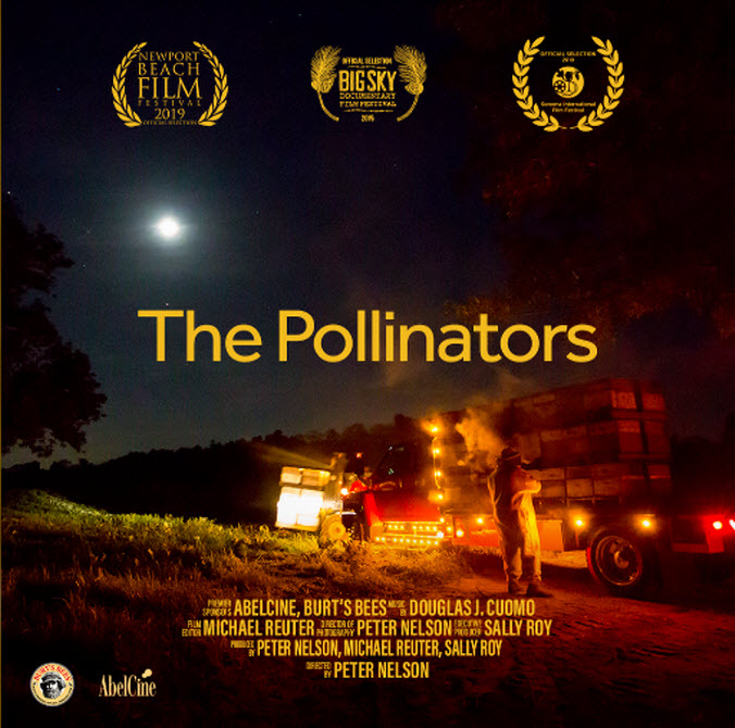 The Pollibnators documentary.jpg