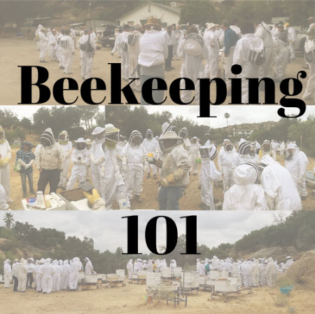 beekeeping class 101 register post.jpg