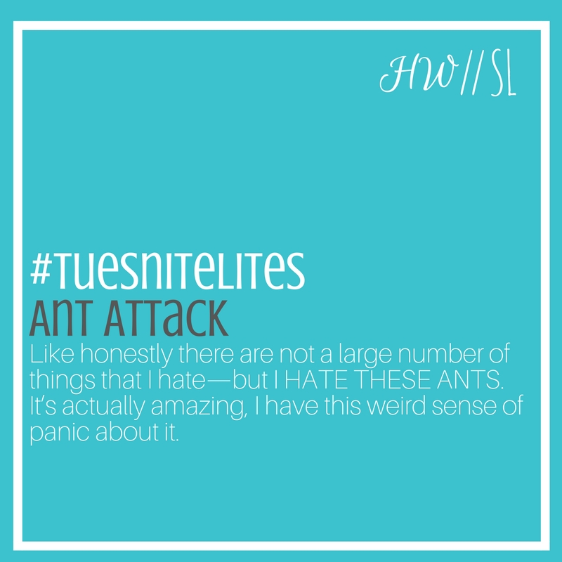 ant attack.jpg