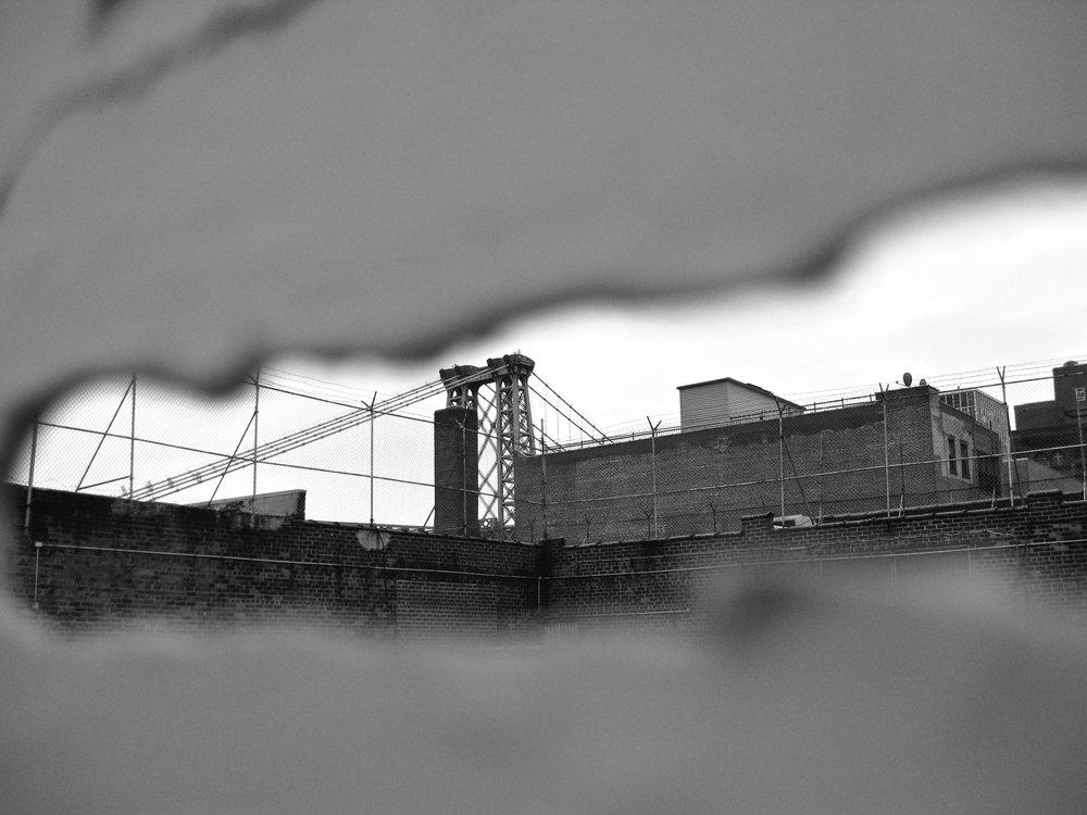 brooklyn - nyc, usa