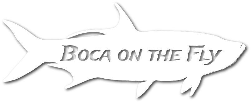 Boca on the Fly