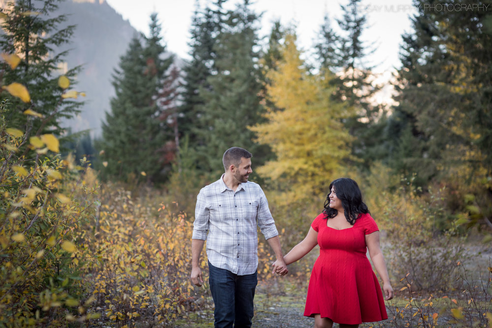 pnw_mountain_engagement-25.jpg