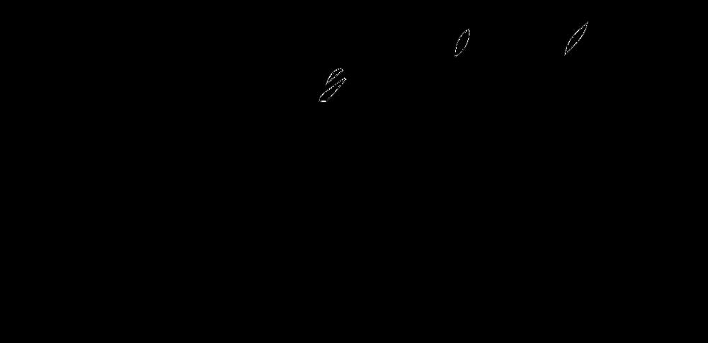 jadea kelly logo.png