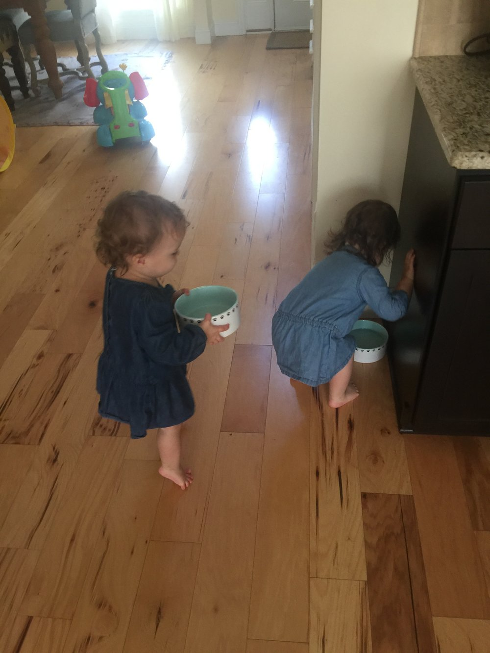 Teaching Twin Toddlers Responsibilities