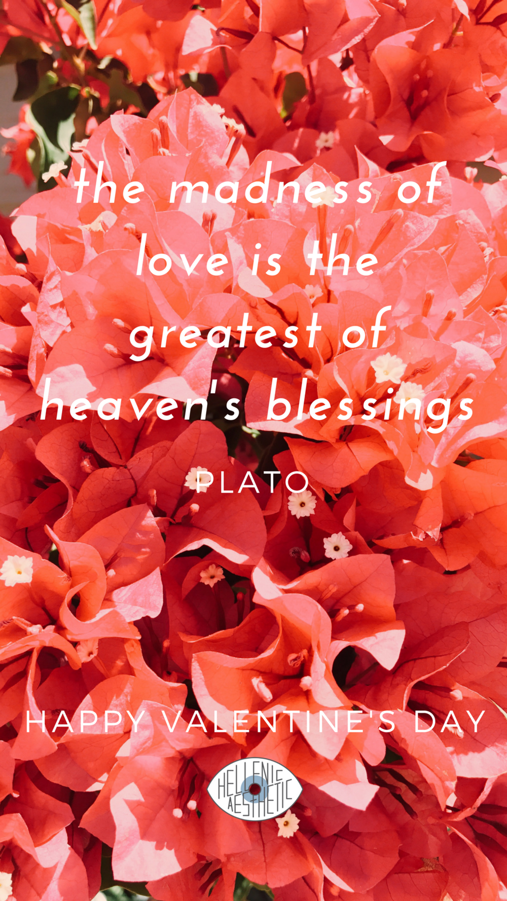plato quote.png
