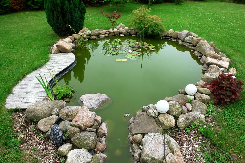 Wallside Windows & Build a Mini Pond in Your Backyard \u2014 Wallside Windows®