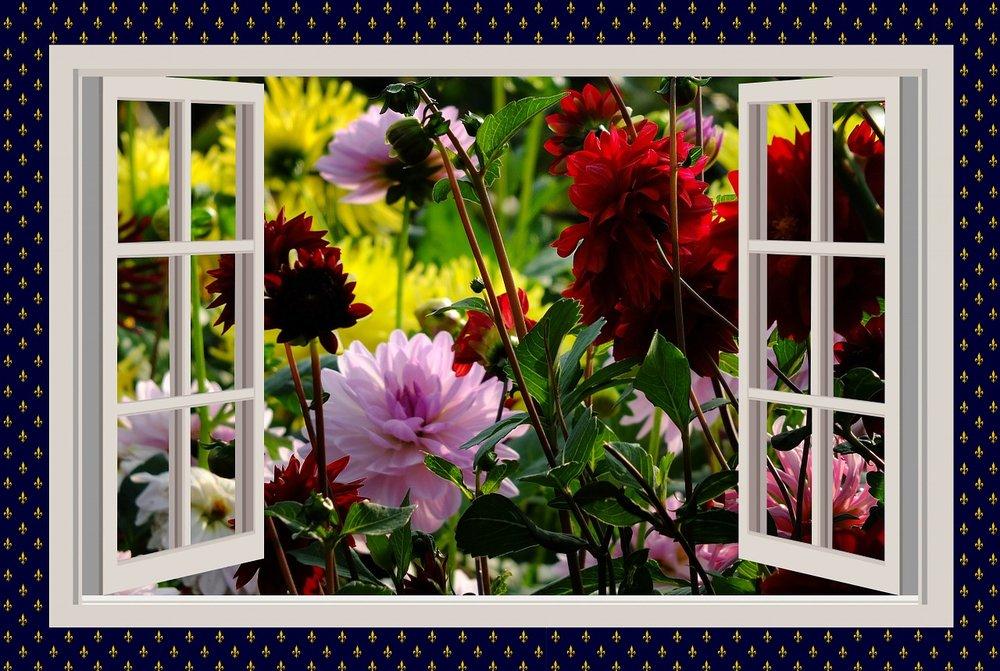 a-beautiful-day-775461_1280.jpg