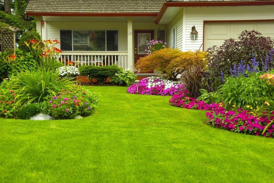 Want a Green Lawn This Spring? What You Need to Do Now