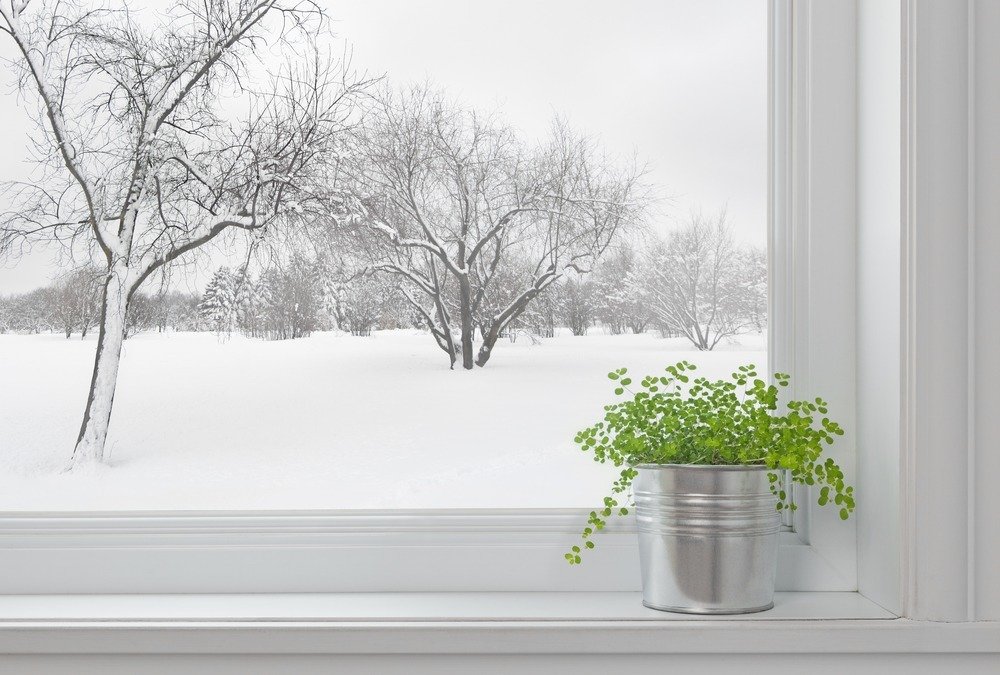 Wallside Windows Advice for Winter