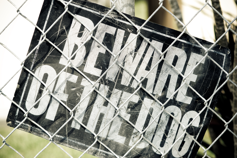 """Beware of the dog"" sign"