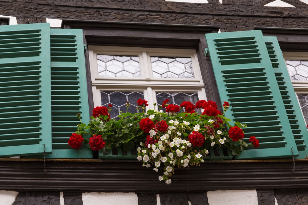 Enhancing Your Windows With Shutters