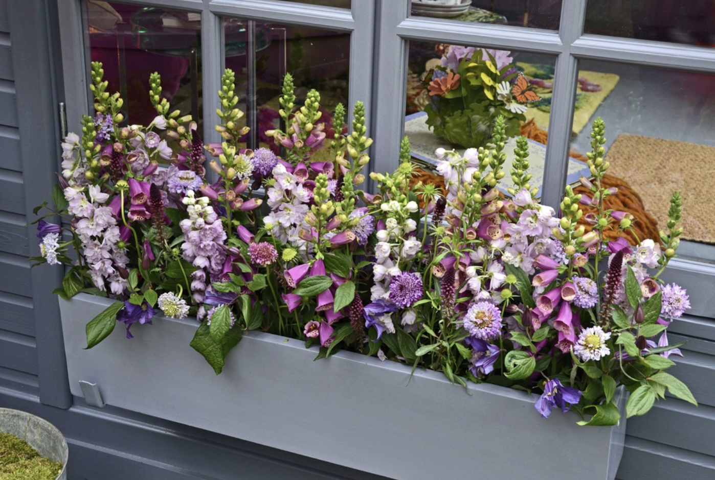 How window box planters can add spring color to your homes exterior how window box planters can add spring color to your homes exterior mightylinksfo