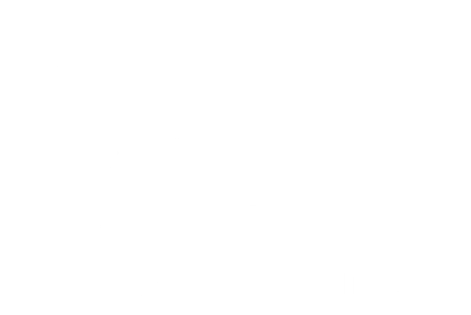 LOUISE LOUGHLIN  Online Personal Trainer NMT Physical Therapist