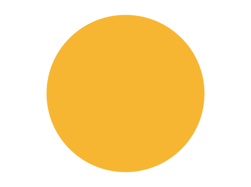 primary_color_-_tumeric.png