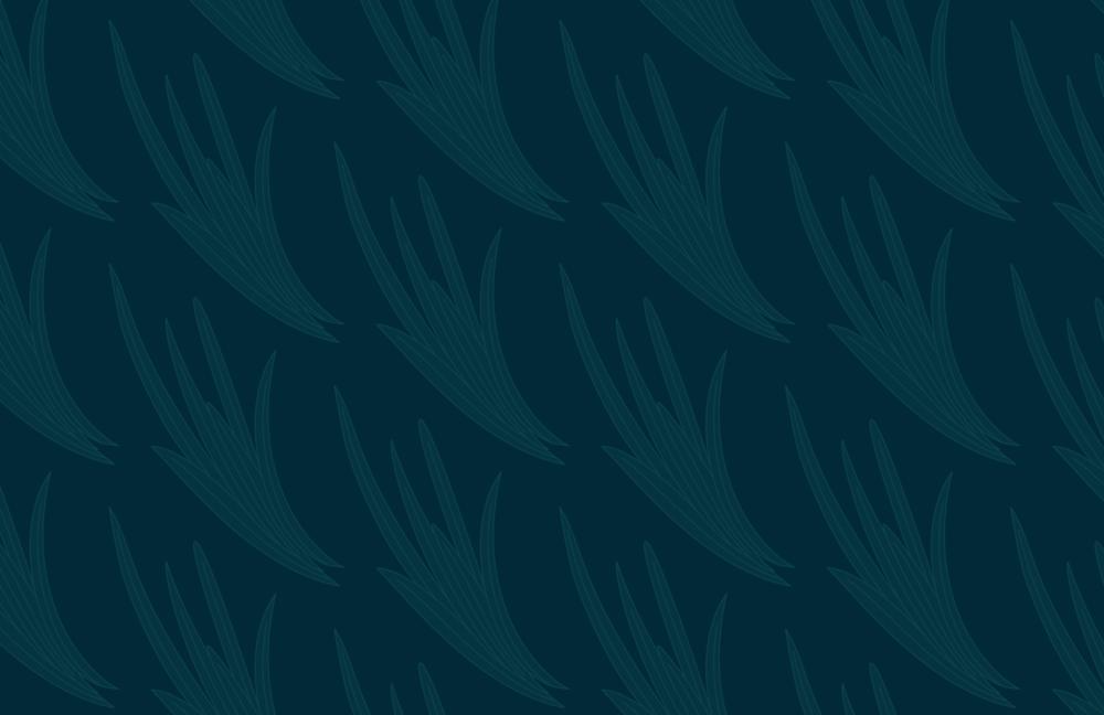 pattern_02.png