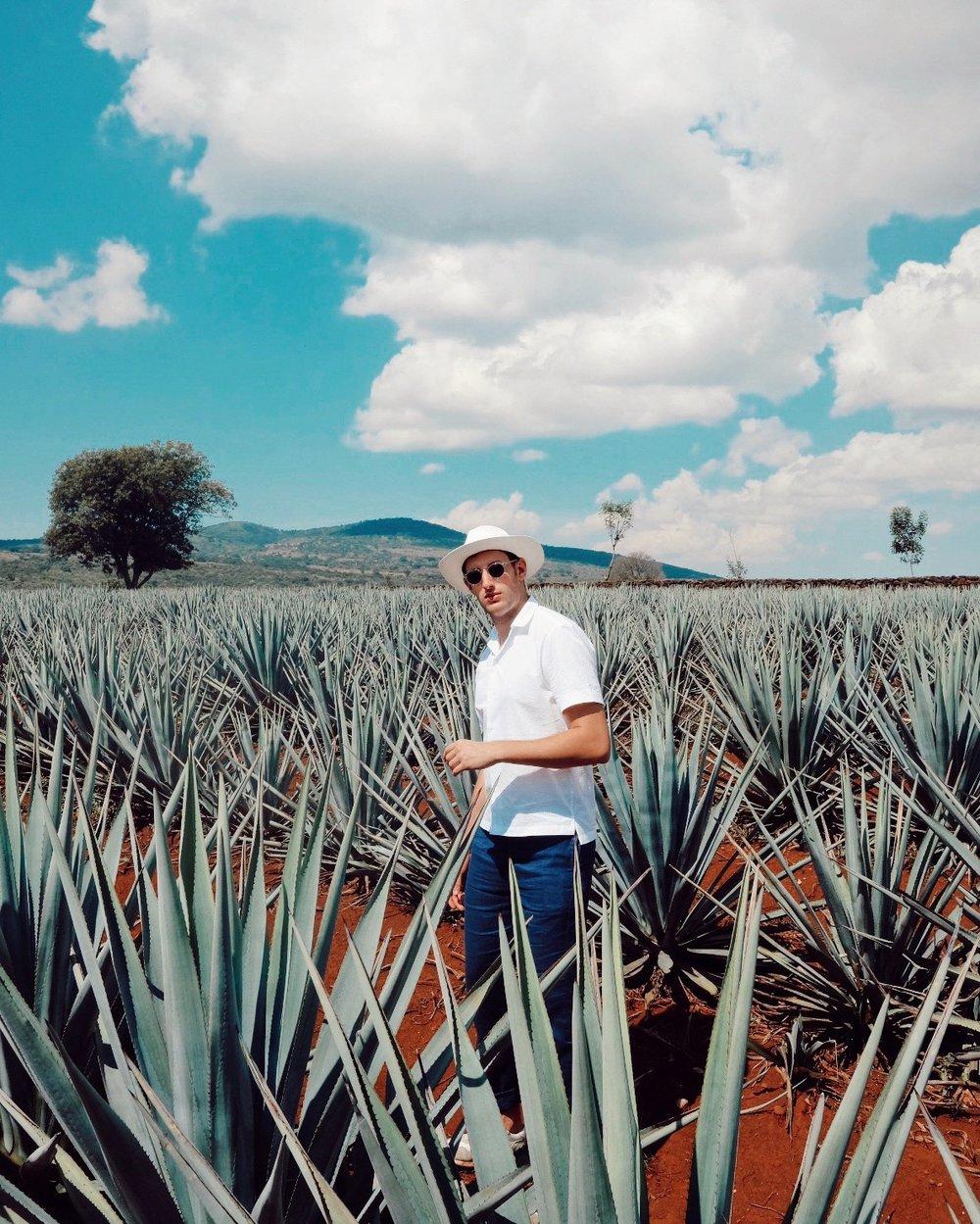 In the agave field wearing Frescobol Carioca