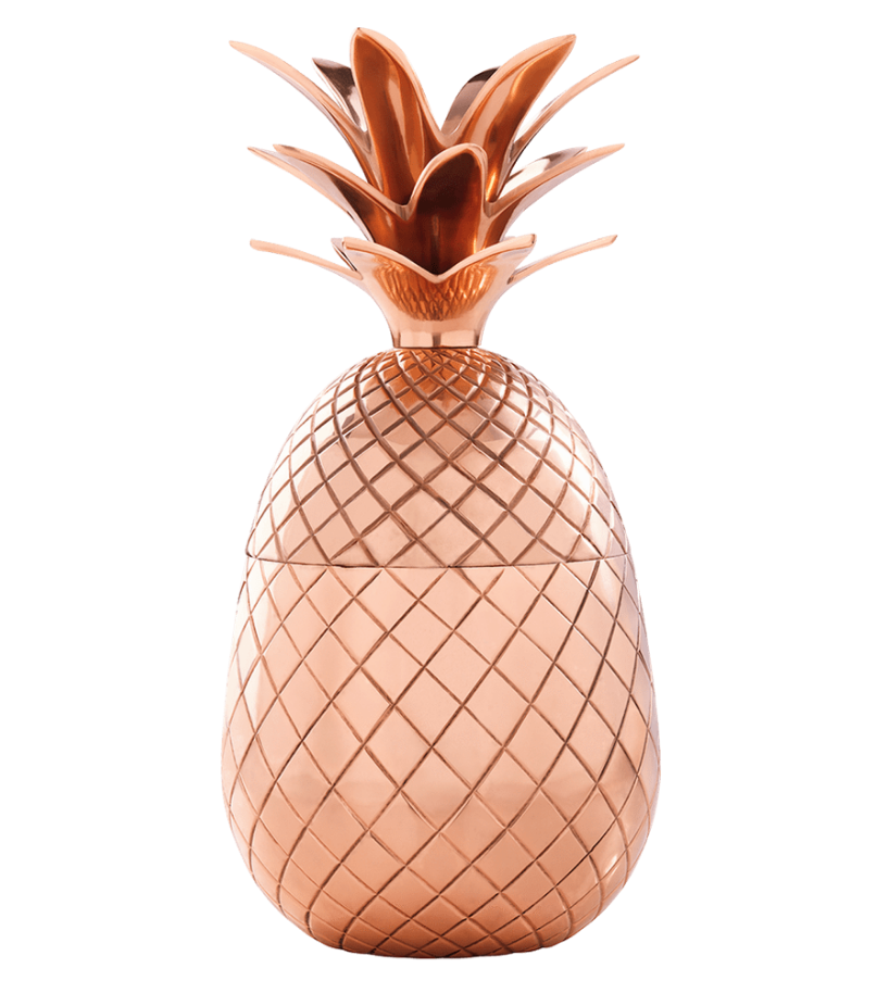$79 - Absolut Elyx Pineapple   I'm sure you've seen these ALL over Instagram, but it's such a cute gift! Especially for someone that hates winter.