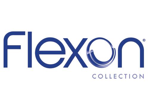 flexon_logo_colored.png