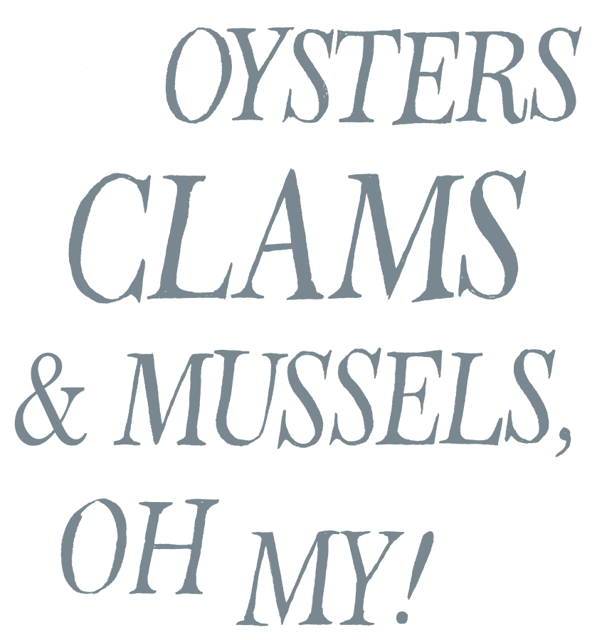 type-oysters-clams-mussels.png