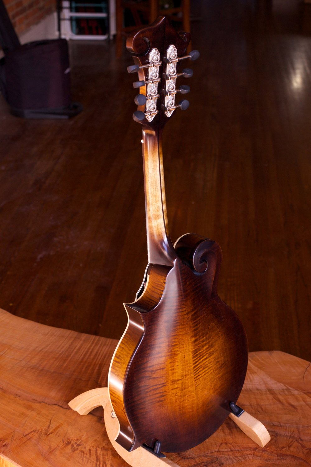 F5S #216 w- JTP and VV neck back.jpg