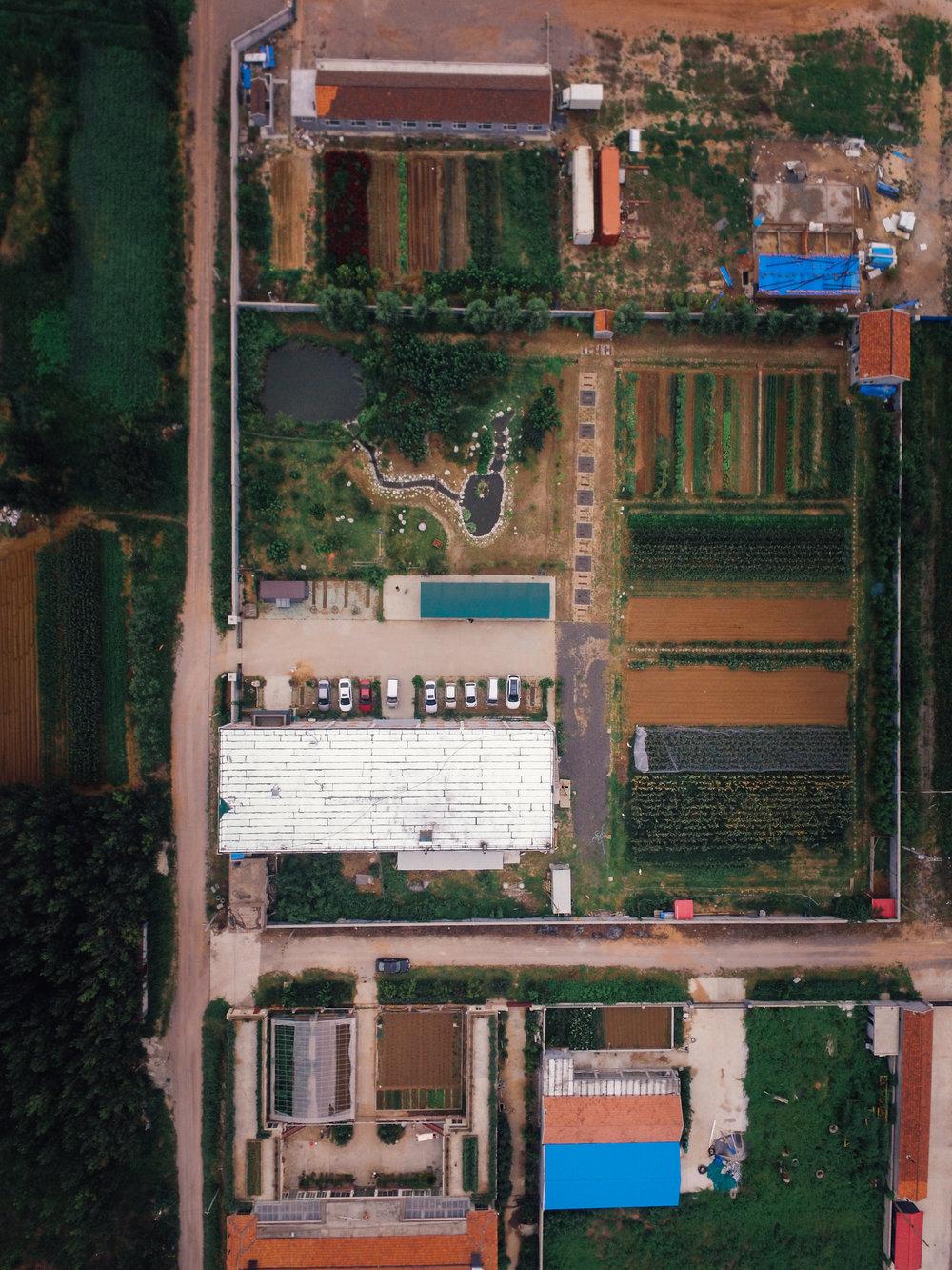 qingdao_overhead-1.jpg