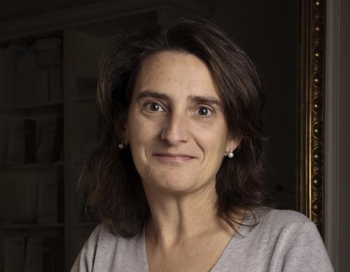 Teresa Ribera, Directora del Instituto para el Desarrollo Sostenible y Relaciones Internacionales (IDDRI) de París.