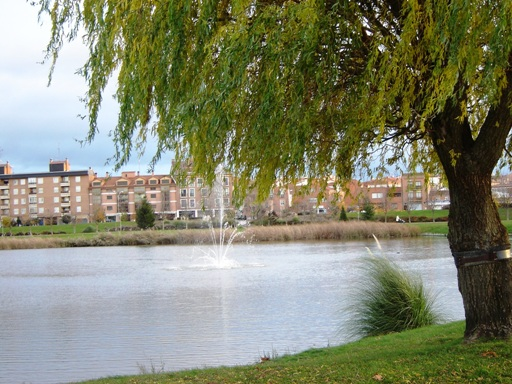 Laguna de Duero.jpg