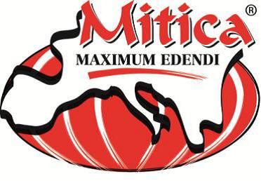 Mitica-Logo.png