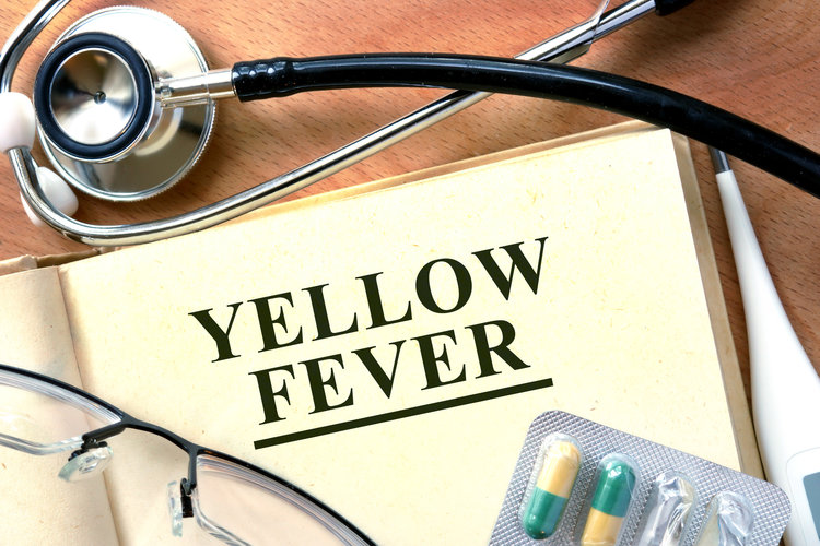 Obtain your Yellow Fever vaccine certificate.