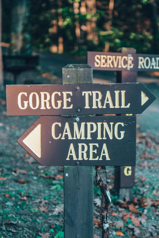Gorge Trail, Watkins Glen Park