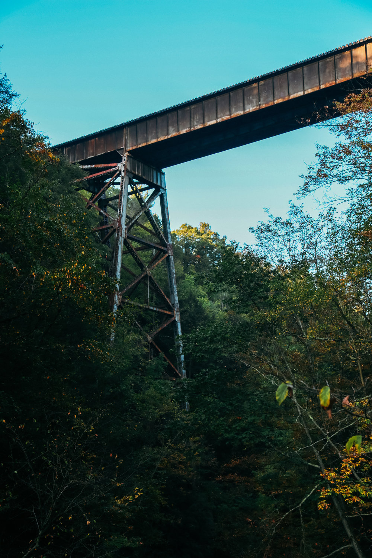 Finer Lakes Bridge
